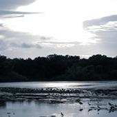 Sunset in Cullinan Park