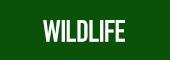 Wildlife Label